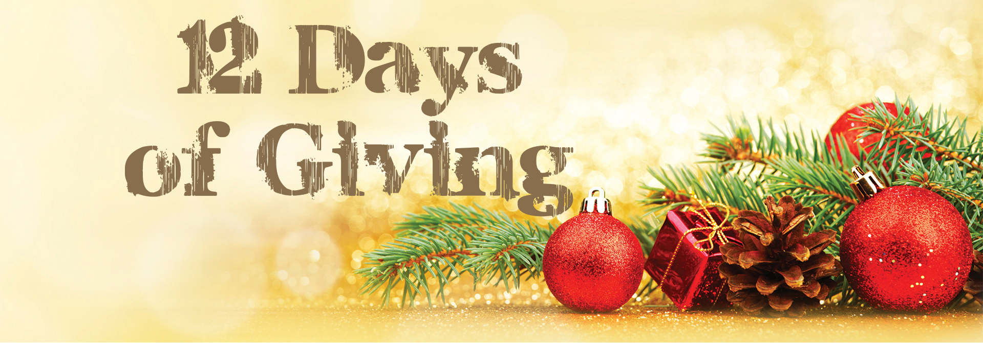 12 Days of Giving Christmas ornaments and pine cones